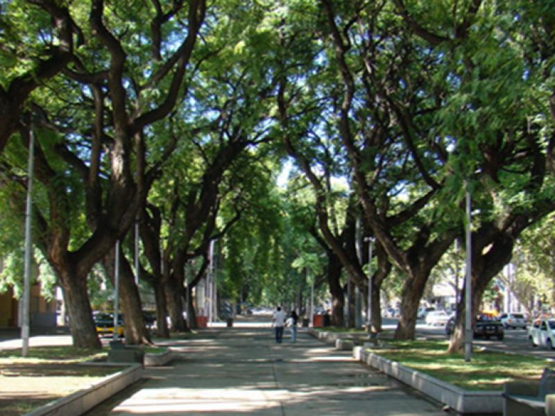 Paseo Alameda Mendoza Argentina 2