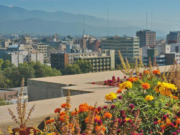 O que fazer em Mendoza 15