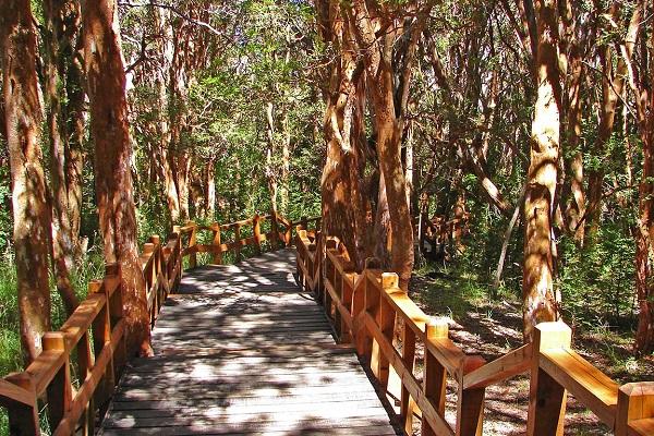 Os principais pontos turísticos de Bariloche10