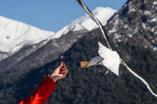 Roteiro de 5 dias em Bariloche 11